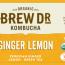 PERUVIAN GINGER LEMON ORGANIC GREEN TEA