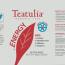 RED ENERGY ORGANIC TEAS BAGS